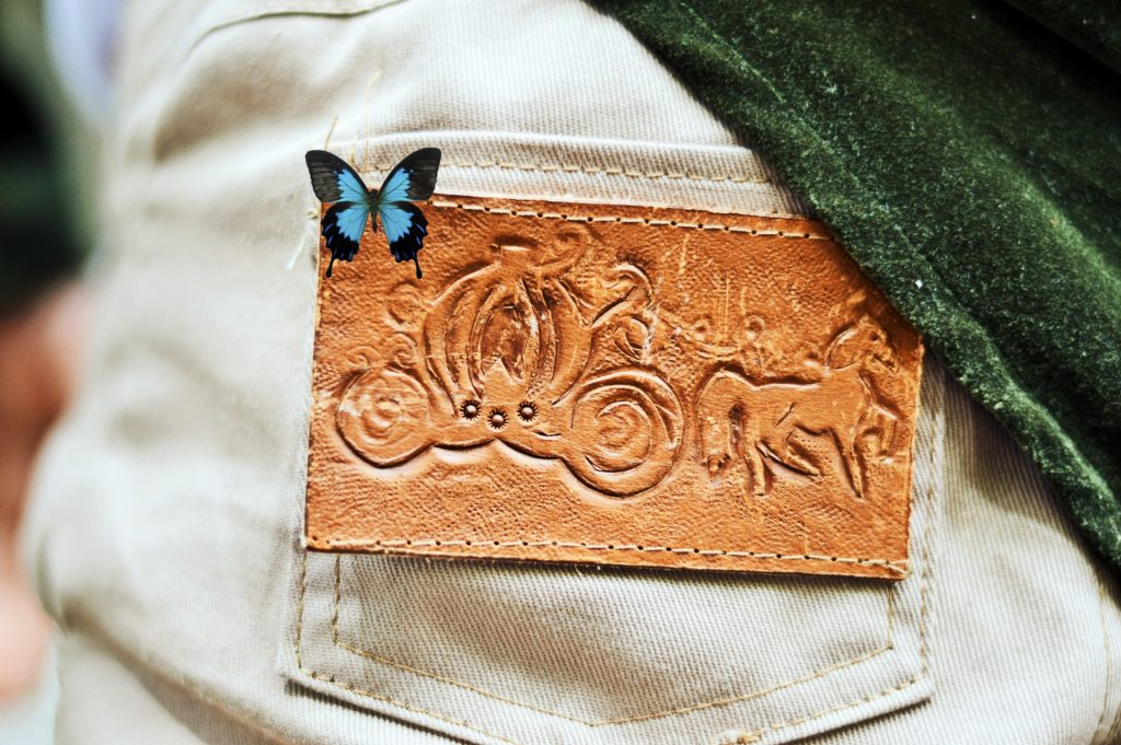 Cinderella leather patch