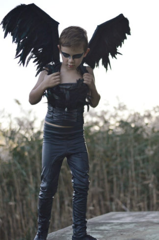 Black Swan / Swan Lake inspired boys costume