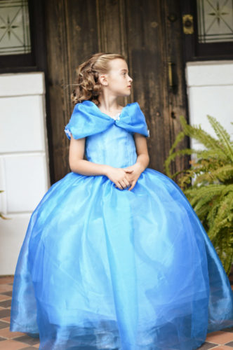 Cinderella 2015 -Inspired by the Butterfly Ballgown  HANDMADE -  FREE POSTAGE within Australia