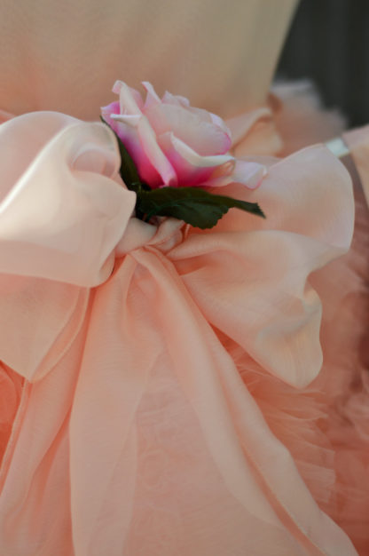 Stunning Flower Girl /  Special occassion Gown.